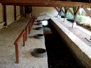 Lavoir-du-Gue-aux-chevaux-